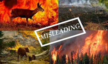 Old foreign photos being circulated as Nepal wildfire photos